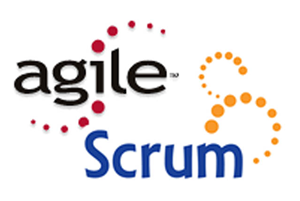 Agile - Certification Training & IT Courses with Guaranteed ResultsVendor Logo
